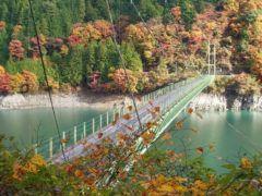 &nbspLocais em Shizuoka para apreciar a beleza das folhas de outono