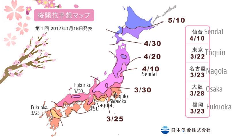 &nbspSakura: Japão já informa a previsão da temporada dessas flores