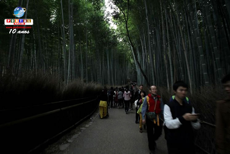 &nbspOs 25 lugares mais bonitos do Japão