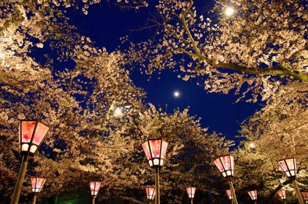 &nbspTop 10 pontos turísticos mais recomendados de Shizuoka