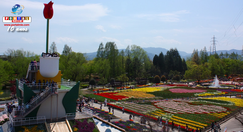 &nbspDica de passeio: Festival de Tulipas em Toyama