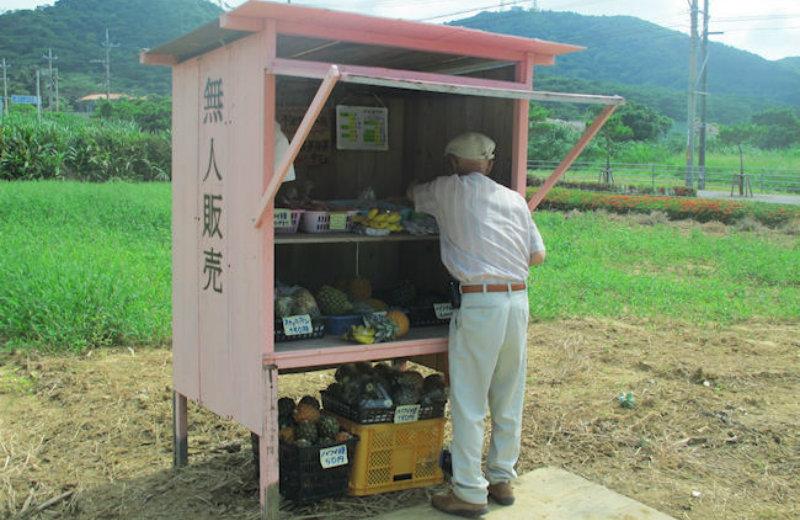 &nbspEstrangeiros flagrados furtando melancias da vendinha sem vendedor
