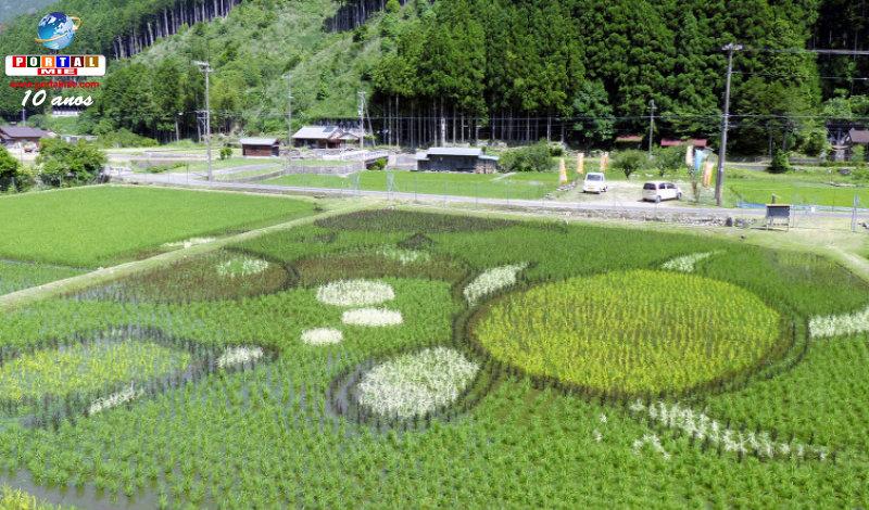&nbspPasseio: tartarugas na arte no campo de arroz em Mie