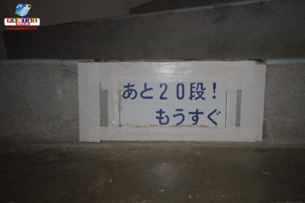 &nbspConheça o Higashi-Hennanzaki, um dos melhores cenários no Japão