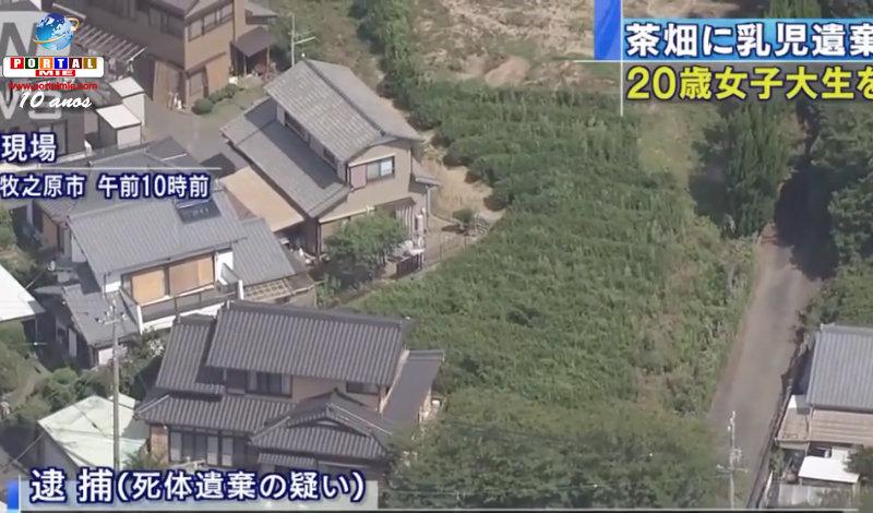 &nbspEstudante de Shizuoka descarta bebê na lavoura de chá