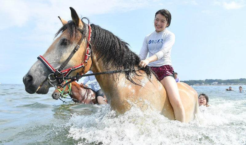 &nbspPasseio a cavalo no mar, uma experiência relaxante