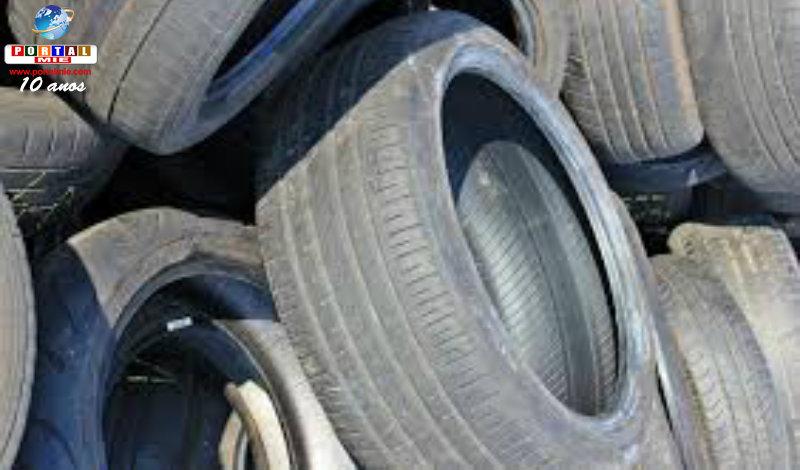 &nbspBrasileiro preso por furto de pneus