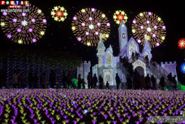 &nbspIluminação de Inverno no Ashikaga Flower Park