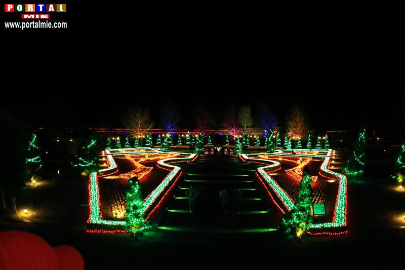 &nbspConheça a bela iluminação de inverno no Hanakairo Flower Park