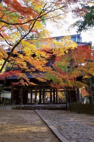 &nbspConfira alguns locais em Shiga para apreciar a beleza das cores do outono