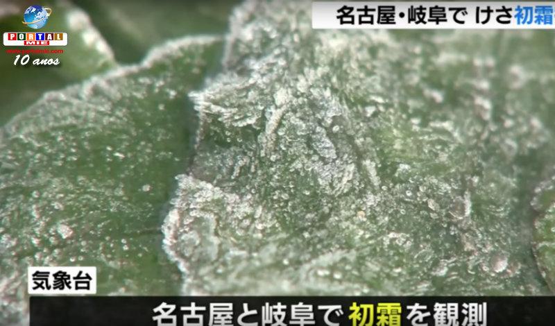 &nbspPrimeira geada do outono-inverno em Nagoia e Gifu