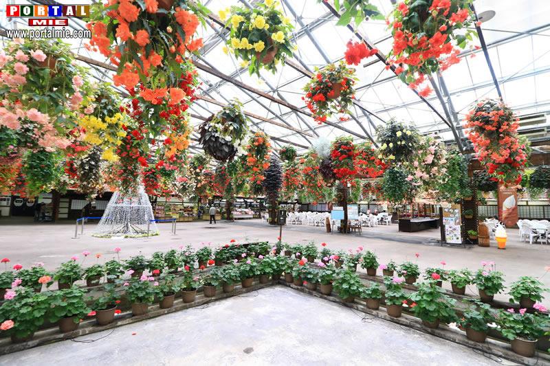 &nbspMatsue Vogel Park: conheça esse belo parque de aves e flores para todas as estações