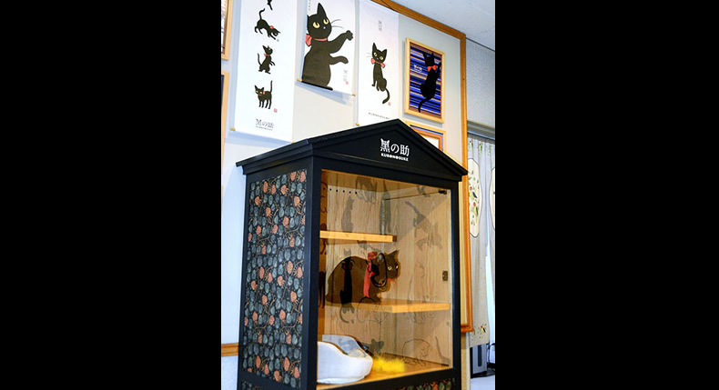 &nbspGato ganha 'escritório' em museu no Japão