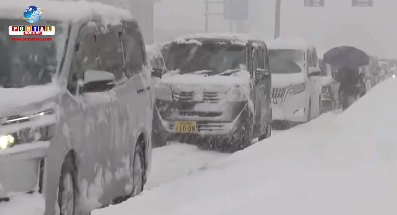 &nbspGoverno dará suporte para áreas atingidas por fortes nevascas