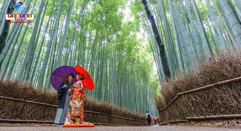 &nbspQuioto se torna destino de casamento para casais do exterior
