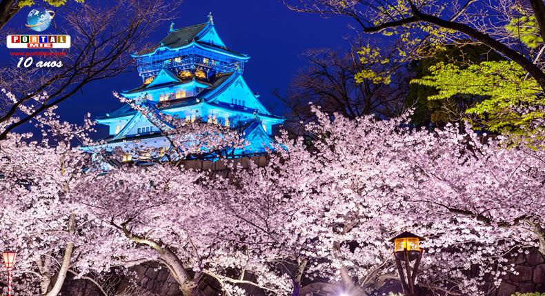 &nbspFlores de cerejeira na área do Castelo de Osaka
