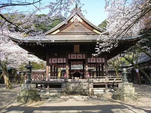 &nbspLocais em Fukui para ver sakura