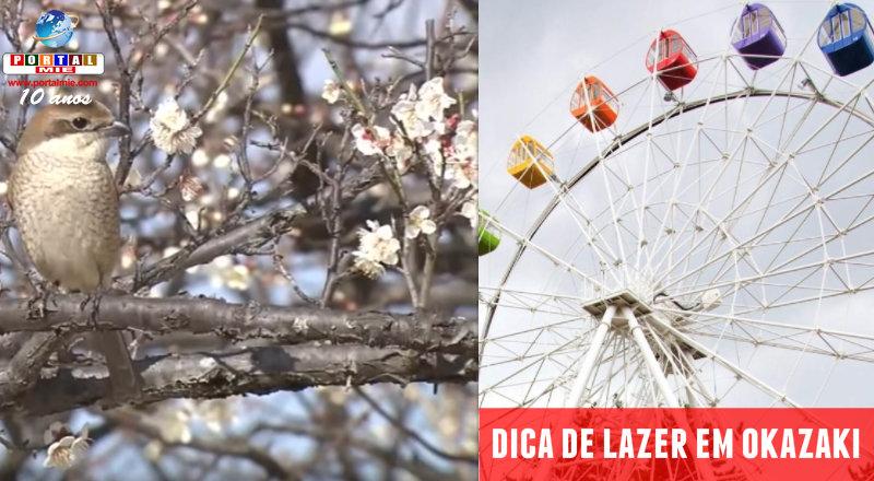 &nbspOkazaki: parque convidativo para apreciar as flores de ameixeiras