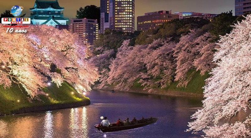 &nbspFestival de Sakura de Okazaki oferece passeio de barco