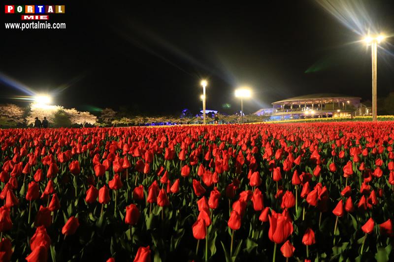 &nbspIluminação e festival de tulipas no Parque Nabana no Sato