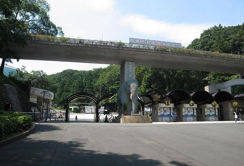 &nbspZoológicos e Parque Marinho de Tóquio com entrada gratuita em 4 de maio