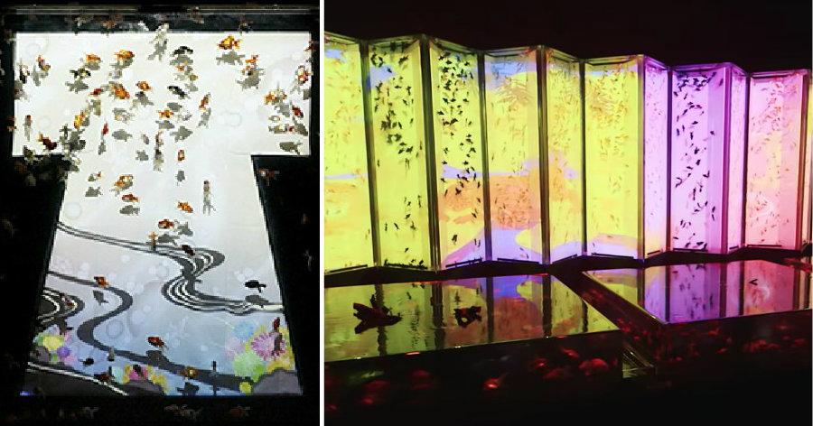 &nbspArt Aquarium: arte, beleza e frescor