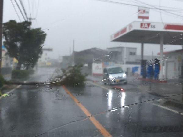 &nbspTufão n.º 24 e os danos em Okinawa: há possibilidade de se repetir em outras regiões