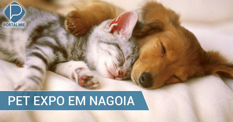&nbspExpo dos pets em Nagoia com muitas atrações