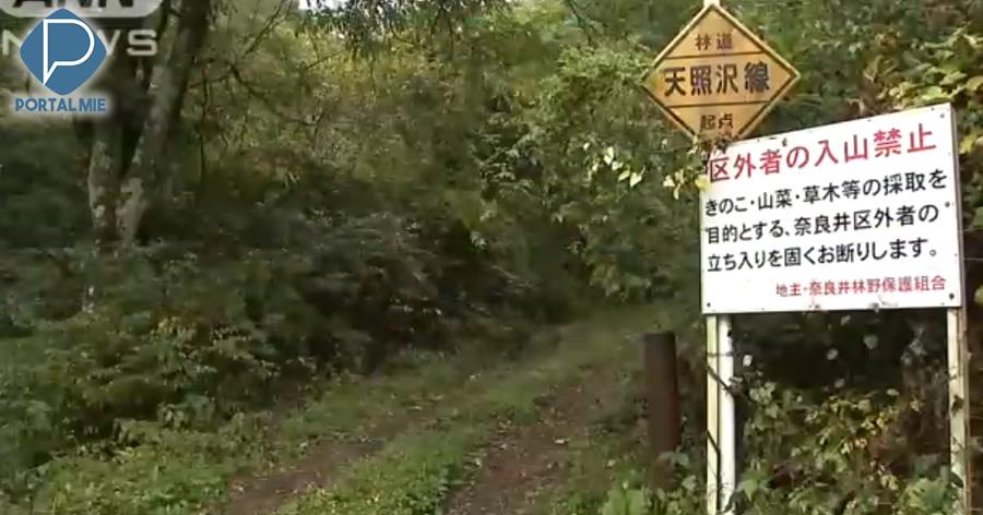&nbspMais uma pessoa morre ao colher cogumelos nas montanhas em Nagano
