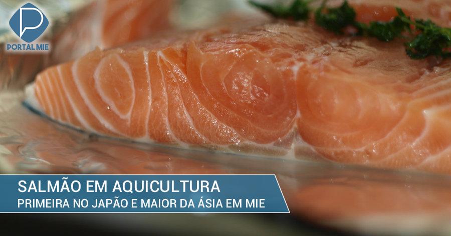 &nbspMie terá a maior indústria da Ásia de cultivo e processamento do salmão