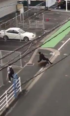 &nbspHomem a caminho do trabalho é derrubado e atacado por javali