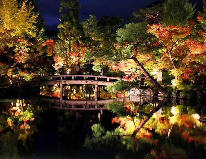 &nbspBelo evento noturno de outono em templo de Quioto
