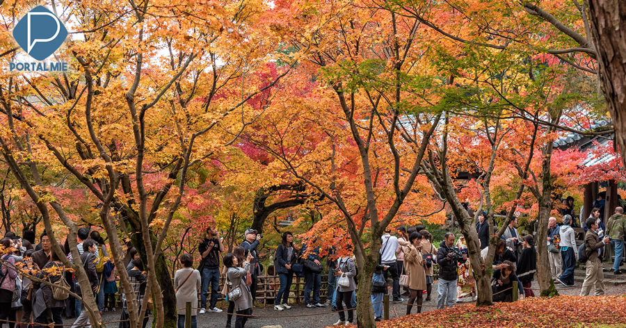 &nbspTofuku-ji: belas cores de outono em Quioto