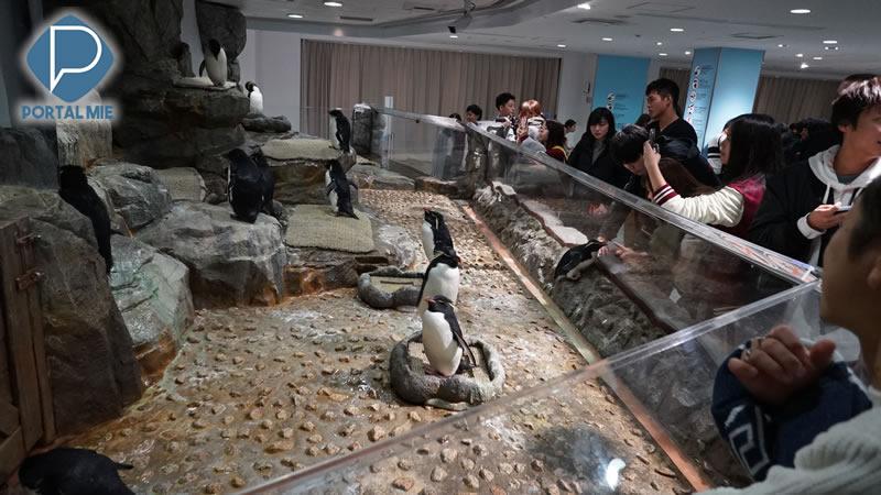 &nbspAquário de Osaka, um dos mais incríveis do Japão