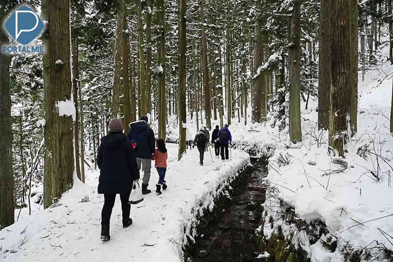 &nbspPasseio de inverno: conheça o Jigokudani Monkey Park