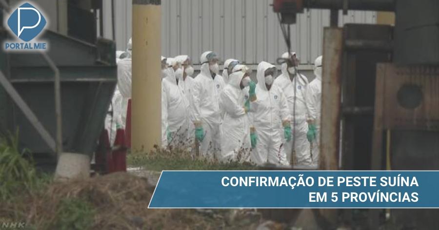 &nbspExpansão da peste suína: 5 províncias confirmadas