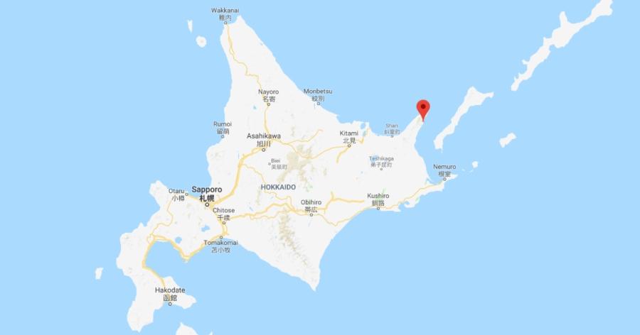 &nbspGolfinhos morrem presos no gelo à deriva, em Hokkaido
