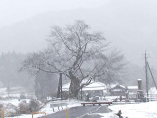&nbspTemperaturas negativas em ampla área e neve